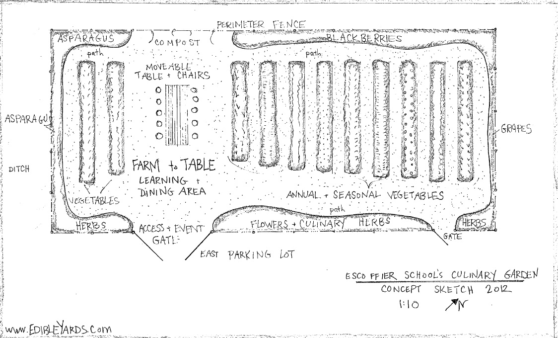 Gallery For Vegetable Garden Drawing